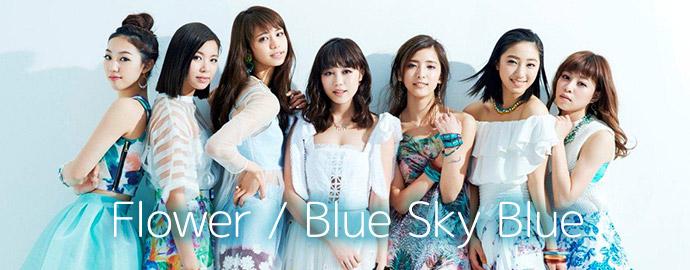 Blue Sky Blue - Flower